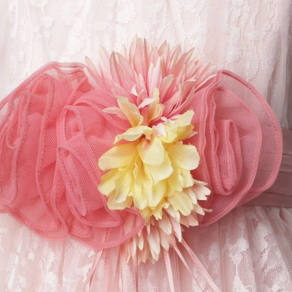 ALETTA Pink Tulle and Lace Dress 1