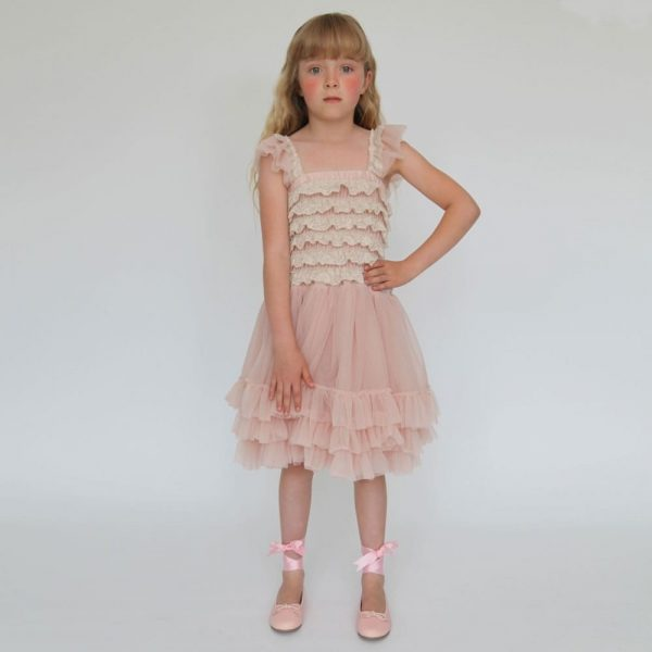 ANGEL'S FACE Blush Pink Ballroom Lace Tulle Dress 1